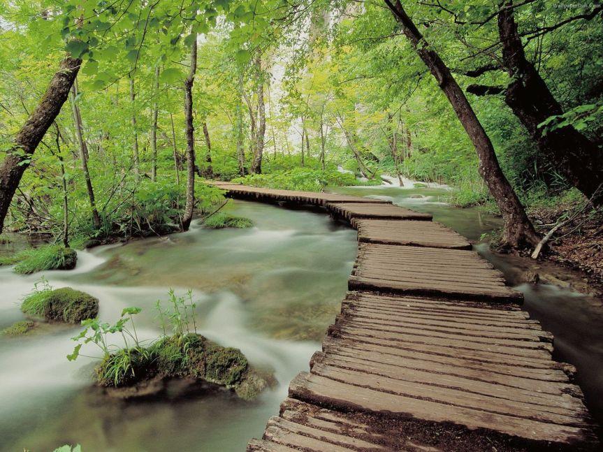 free-desktop-wallpaper-nature-scenes-79